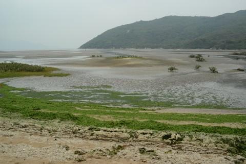 沙坪 Sandflat
