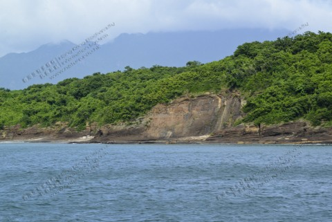 岩岸 Rocky shore