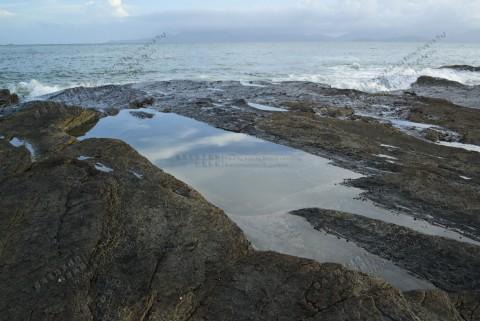 潮池 Tidal Pool