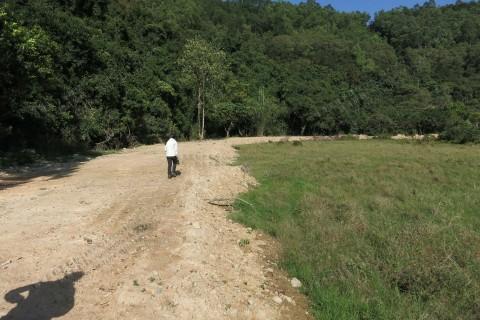 濕地被非法破壞 Wetland illegally trashed